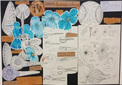 Flowering Plants 2 Board 4