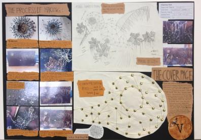 Flowering Plants 2 Board 5