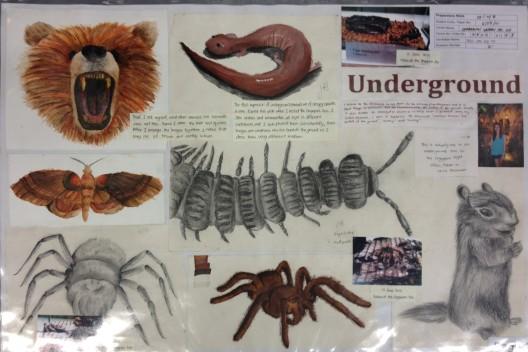 Underground Board 1